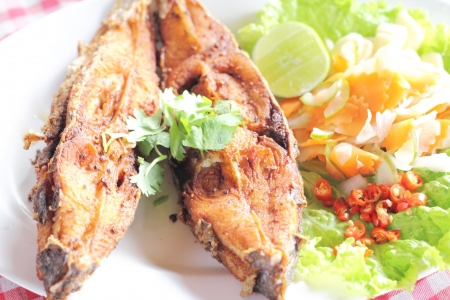 fired fish delicious thai food  Stock Photo - 17115295