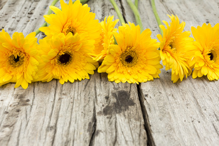 no movement: yellow flower on wood background Stock Photo