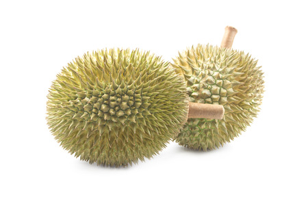 king of thailand: King of fruits, durian isolated on white background