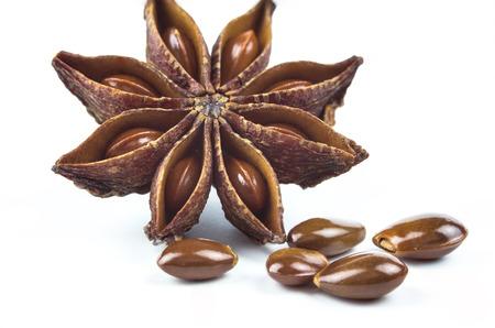 Star anise, badiane spice isolated on white background  photo