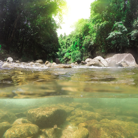 River and Mountain stream with underwater view in deep forest, South of Thailand photo
