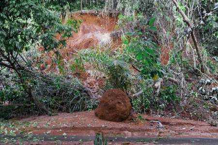 landslip: Natural disasters, landslides during the rainy season