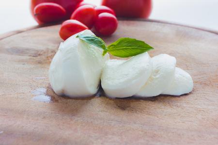 Homemade Organic Mozzarella Cheese with Tomato Stock Photo