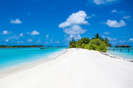 The beautiful landscape of the deserted Indian Ocean sandy beach, shaded by palm trees and tropical plants and over water villas