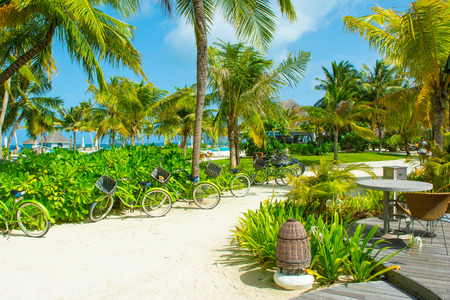 Lhaviyani Atoll, Maldives - 8 July 2018: Territory of a luxury hotel in tropical plants and trees, on the shores of the Indian Ocean