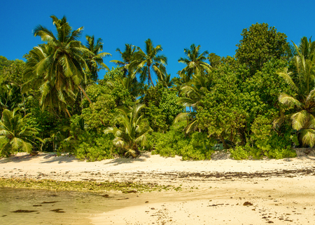 Beautiful tropical landscape of a sandy beach with boulders and green hills, on the shores of the Indian Ocean, Seychelles Standard-Bild - 126089715