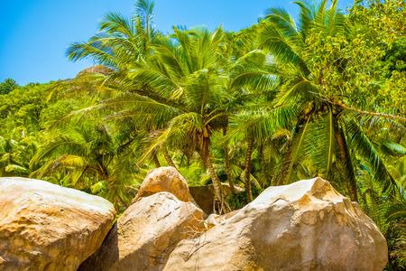 The giant granite boulders on the shores of the Indian Ocean, Seychelles Standard-Bild - 126089801