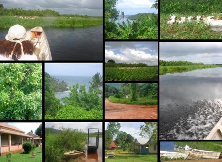 rio amazonas: Paisaje del paisaje de Guyana Foto de archivo