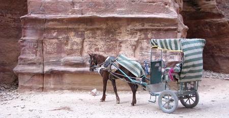 locomotion: Petra
