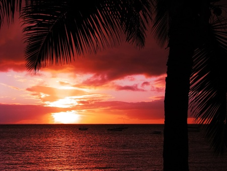 mauritius: Red tropical sunset Stock Photo