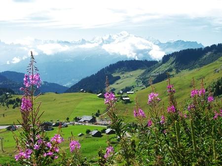 swiss alps: Village of Savoy, scenic z francuskich Alpach w Europie