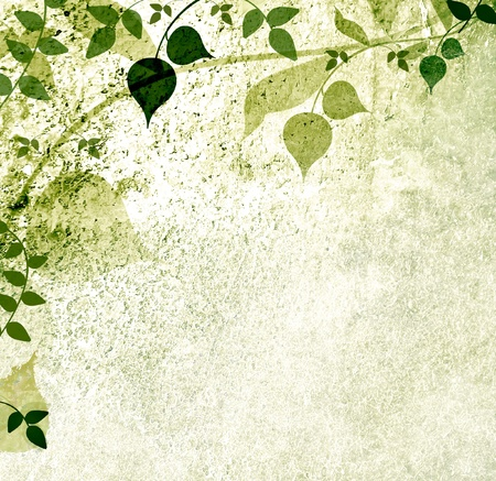 Leaves on used background Stock Photo - 13112386
