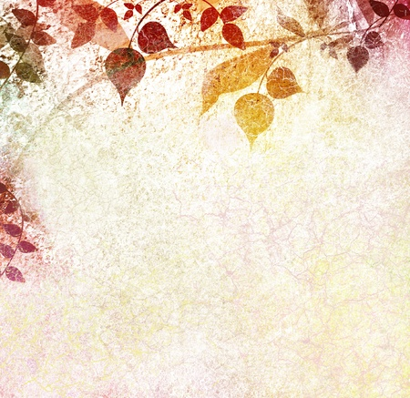 Vintage leaves background in autumn concepts photo