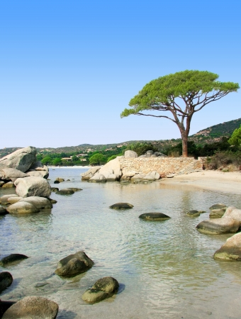 Corsica beach, Palombaggia Stock Photo