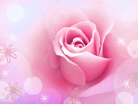 Whimsical rose photo