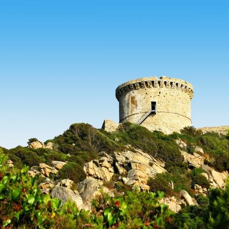 genoese: Campomoro genoese tower of Corsica