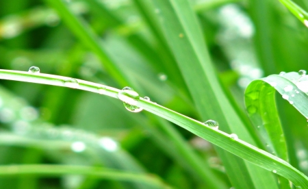 Droplets photo