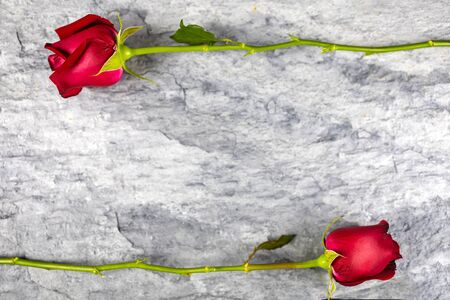 Two red flowers Placed on the stone slabs at the top and bottom positions. for valentine's day wallpaper. Top view.