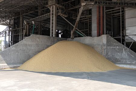 Small pile paddy in the rice mill. To wait to be polished to rice. Rice mill system. Rice Storage. Banque d'images