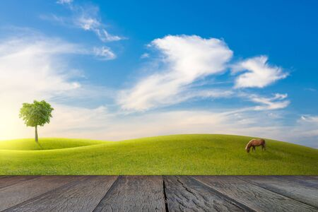 Old wooden floor beside green field on slope, tree and horse with blue sky and clouds background.