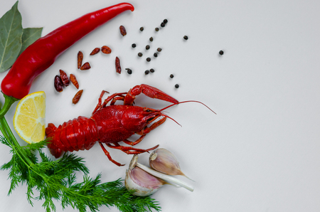 Leafed red crayfish or crawfish with red peper, lemon, dill, garlic and bay leaf