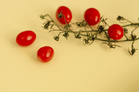 Cherry tomatoes on pastel background. Copy space 写真素材