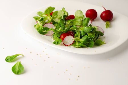 Healthy breakfast or lunch. Fresh vegetable salad of radish, tomatoes and corn salad or Valerianella locusta. Close up on white plate. Diet and vegetarian eating concept. Copy space