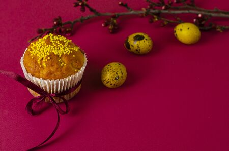 Easter muffin decorated with ribbon and sprinkles, colored eggs and a branch of apricot tree on a dark pink or fuchsia background. Copy space. Greeting card.