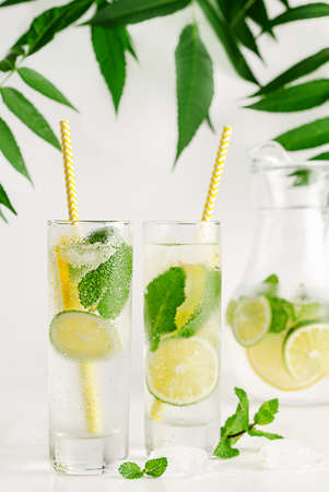 Cocktail with soda, mint lime and lemon. Refreshing summer drink concept.