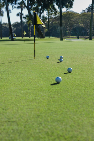 CLOSE-UP ON THE PUTTING GREEN Stock Photo