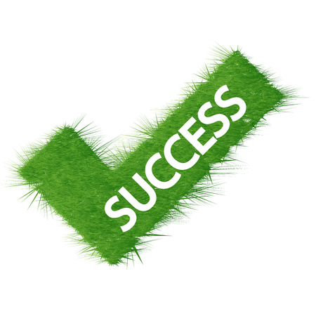 Success green grass checkmark on isolated background.