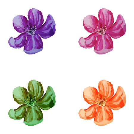Watercolor Flowers Set Vector illustration