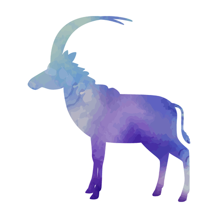 Goat watercolor art isolated. Vector illustration