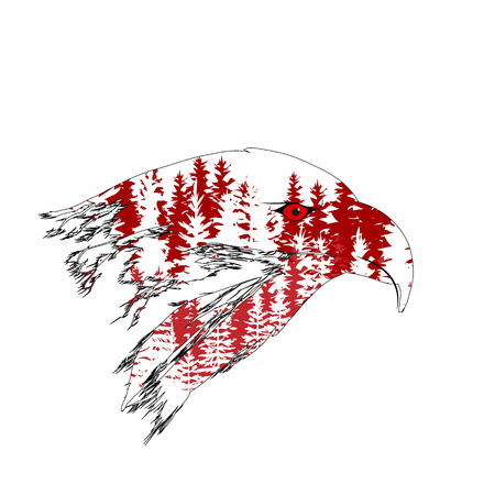 Double exposure of the head of an eagle with a forest.