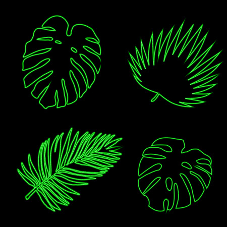Set of thick tropical leaves. Creative Vector illustration