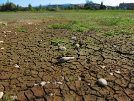 Dry bottom of a pond photo