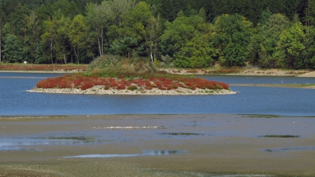 dryness: Island covered with colorful plants in the middle of drying pond