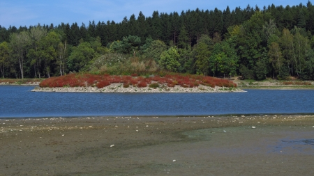 dryness: island covered with green and red plants in the middle of drying dam Stock Photo