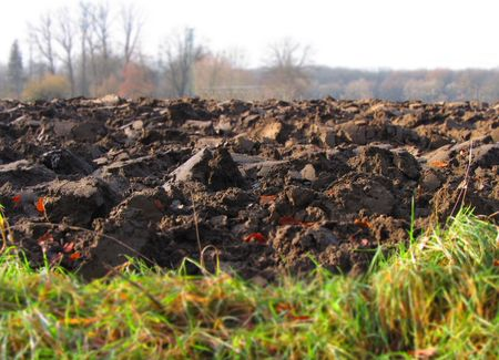 the ploughed field: ploughed field with blurred background and foreground