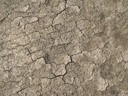 background texture of dry soil photo
