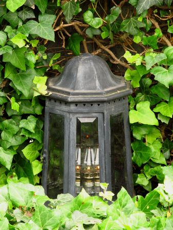 burried: Old lantern on the grave covered with green ivy