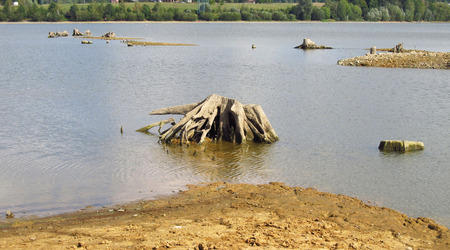dry banks of a dam with revealed dead stumps of trees with bizzare roots Stock Photo