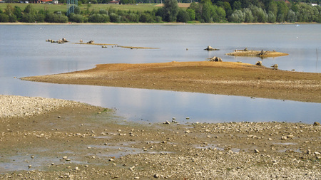 revealed: dry banks of a dam with revealed dead stumps of trees with bizzare roots Stock Photo