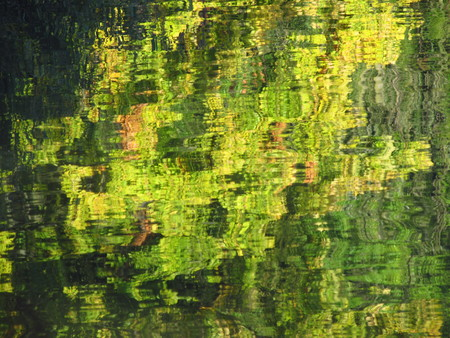 shiver: green and yellow reflections of trees on the water surface useful as background Stock Photo