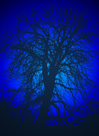 illustration of silhouette of tree in the night in blue tones