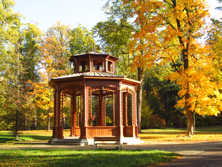 summerhouse: beautiful wooden arbour and yellow trees in the park in autumn