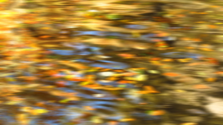 tones: abstract blurred background in yellow and orange tones