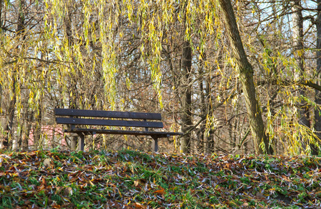 nook: melancholic nook with a bench in the park in autumn Stock Photo