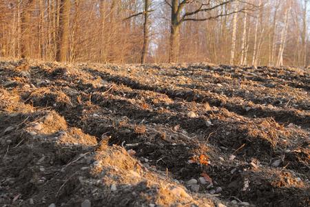 Solchi sul campo arato in autunno Archivio Fotografico - 50157444