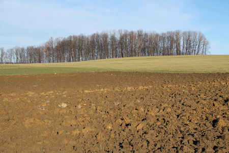 plough land: ploughed soil on the field and blue sky in autumn